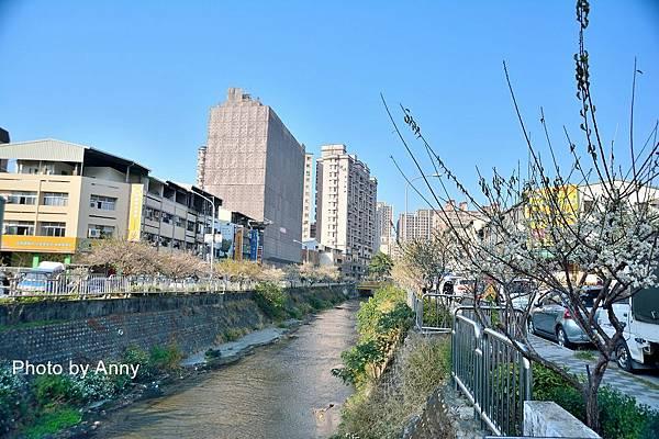 梅川7.jpg