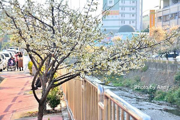 梅川38.jpg