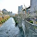 梅川37.jpg