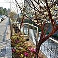 梅川49.jpg