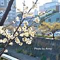 梅川59.jpg