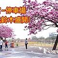 紫南宮a1.jpg