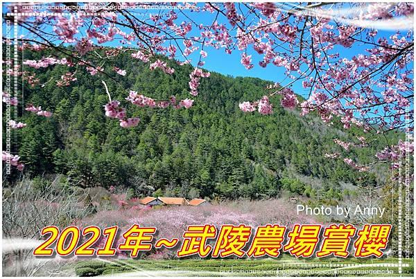 武陵a1.jpg