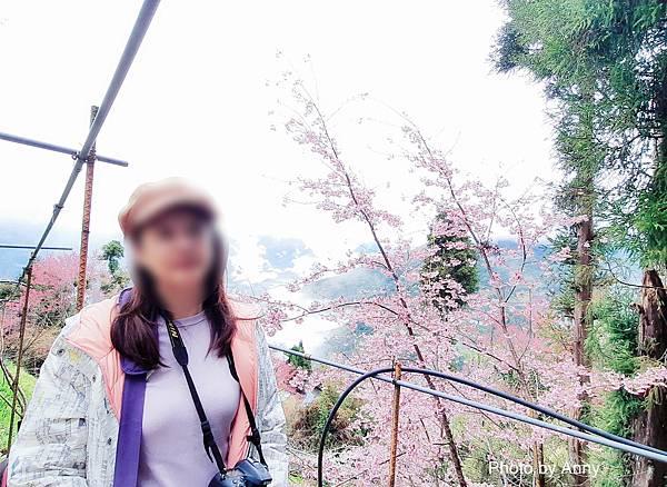 恩愛農場21.jpg