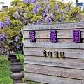 紫藤1.jpg