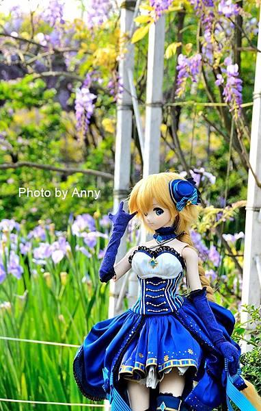 紫藤75.jpg