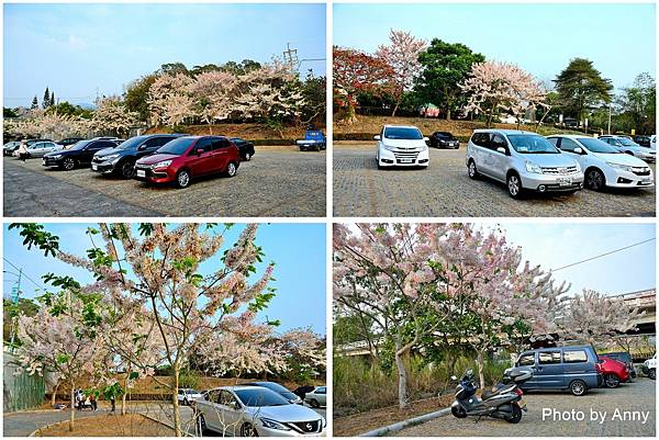 竹崎公園9.jpg