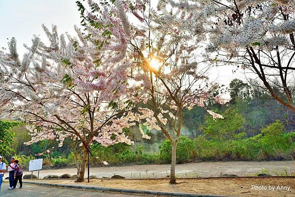 竹崎公園7.jpg