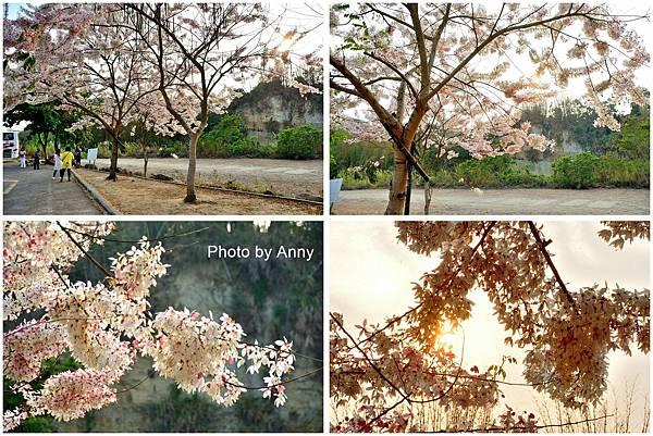 竹崎公園8.jpg