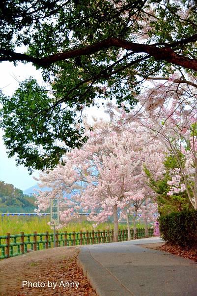 竹崎公園11.jpg