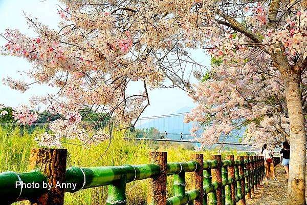 竹崎公園16.jpg