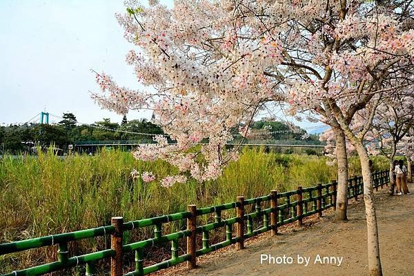 竹崎公園15.jpg