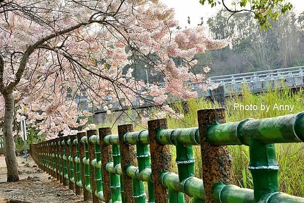 竹崎公園22.jpg