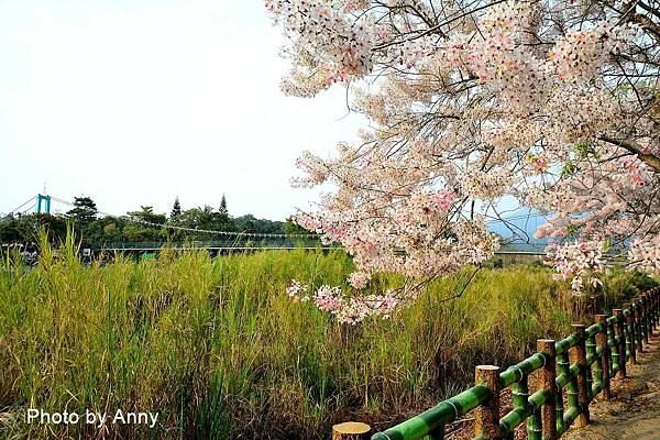 竹崎公園17.jpg