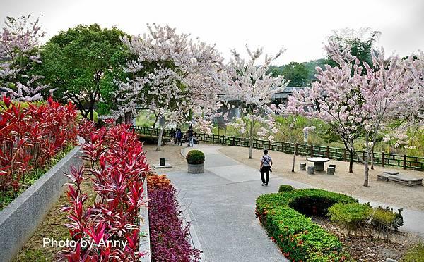 竹崎公園30.jpg