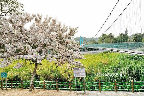 竹崎公園48.jpg