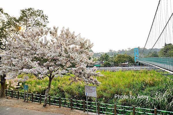 竹崎公園49.jpg