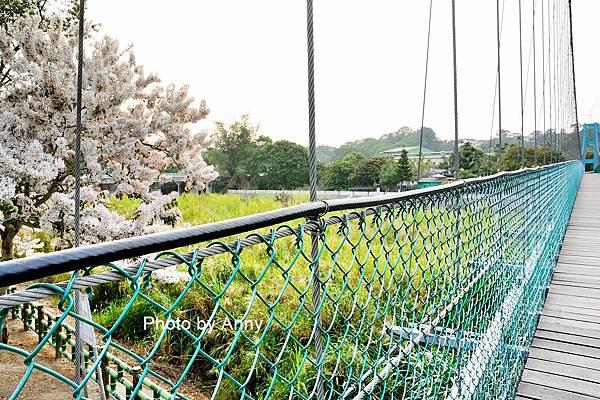 竹崎公園52.jpg