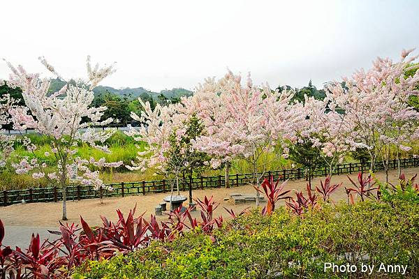 竹崎公園46.jpg