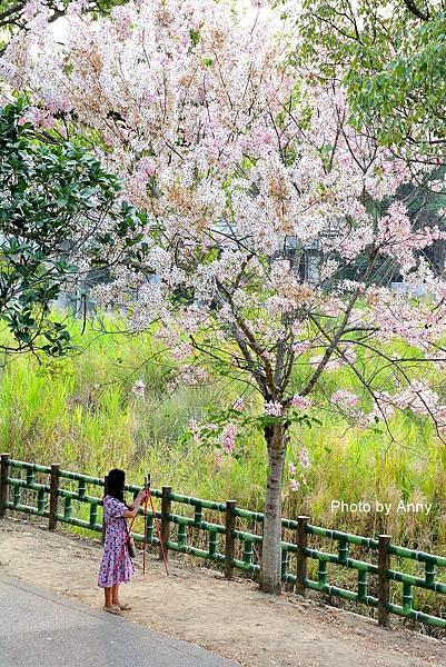 竹崎公園50.jpg