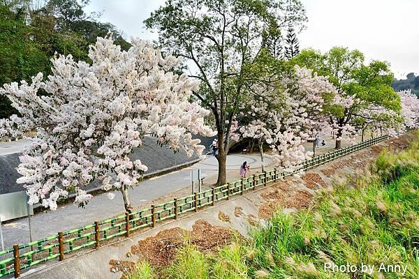 竹崎公園56.jpg