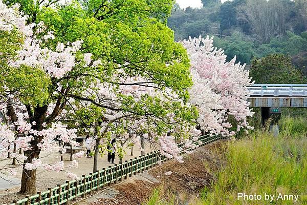 竹崎公園57.jpg