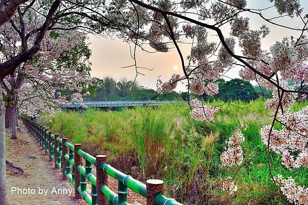竹崎公園67.jpg