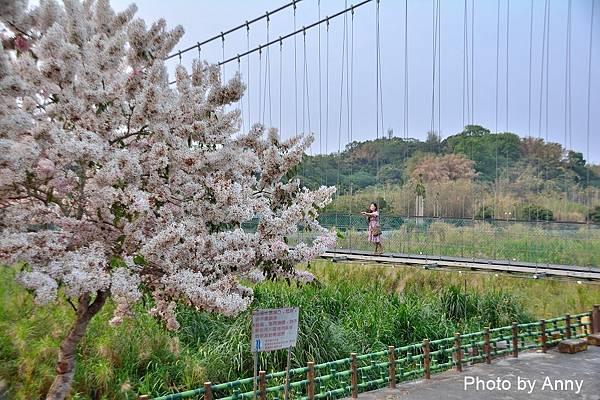 竹崎公園80.jpg