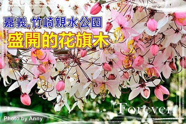 竹崎公園a1.jpg