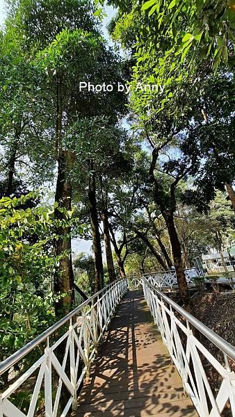 竹崎公園29.jpg