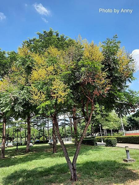 健康公園30.jpg