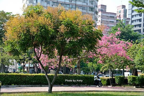 健康公園63.jpg