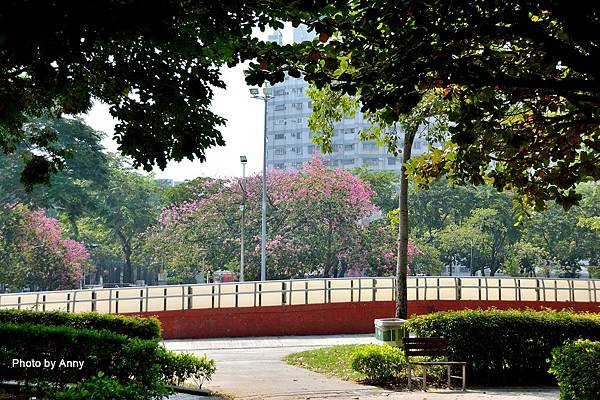 健康公園61.jpg