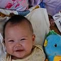 我的好朋友-小海馬 (5).JPG