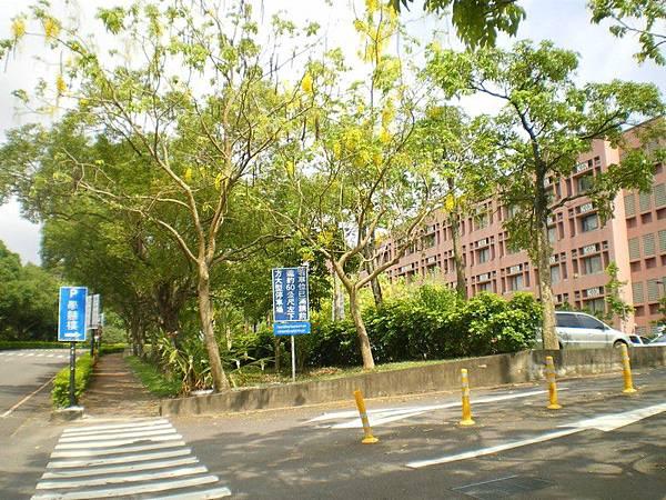 南華大學 15.JPG