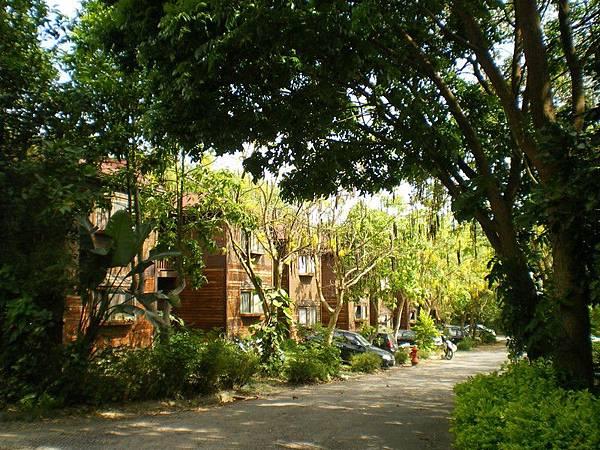 南華大學 39.JPG