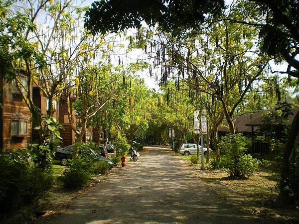 南華大學 42.JPG