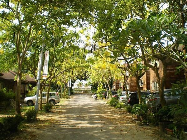 南華大學 43.JPG