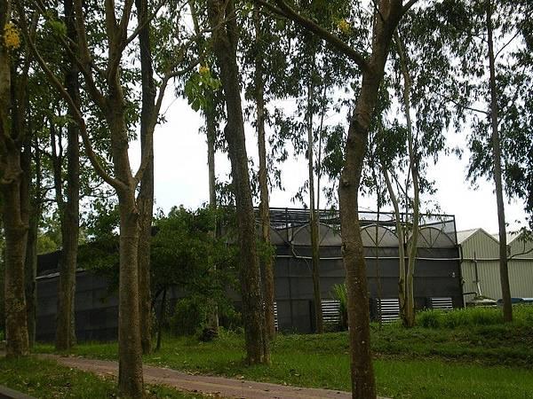 南華大學 65.JPG