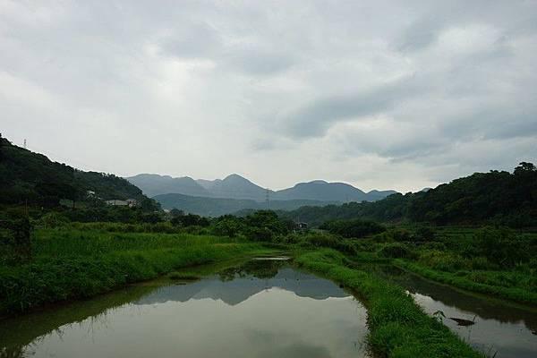 八連下圳田間步道 14.jpg