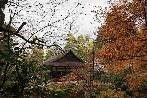 709 南禪寺庭園 18.jpg