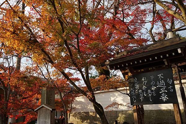 710 永觀堂禪林寺 04.jpg