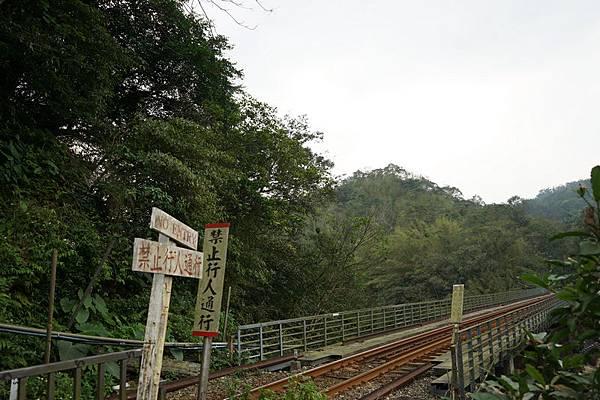 十分瀑布公園 24.jpg