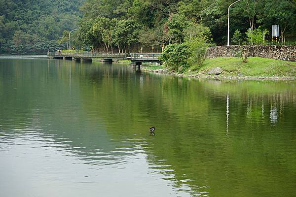 龍潭湖 24.jpg