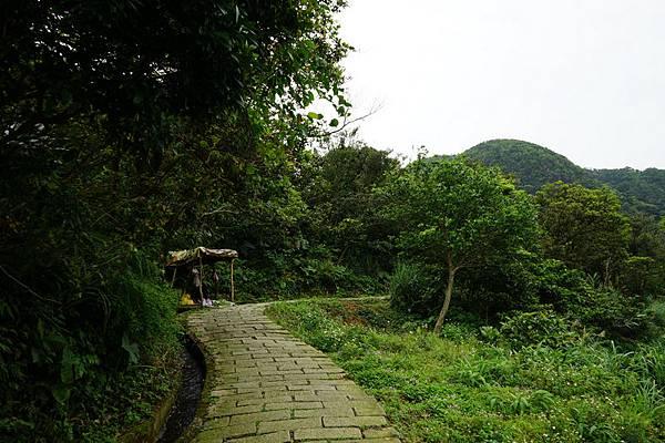 青山瀑布 08.jpg