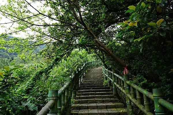 青山瀑布 06.jpg