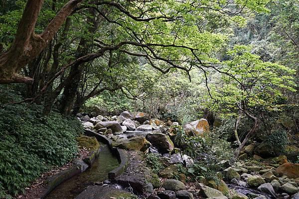 青山瀑布 21.jpg