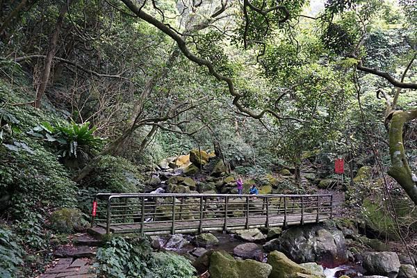 青山瀑布 24.jpg