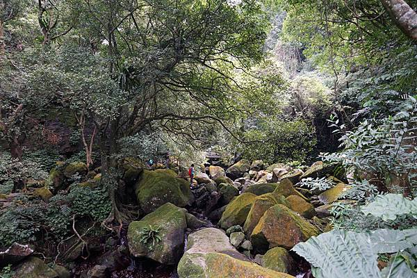 青山瀑布 39.jpg