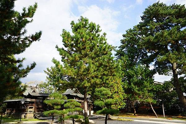205 松江賣布神社 11.jpg